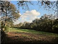 SX3868 : Field, Ashton by Derek Harper