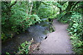 SW6528 : Footpath by a branch of the River Cober by Bill Boaden