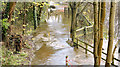 J3067 : Flooded towpath, Drumbeg, Dunmurry - November 2014(1) by Albert Bridge