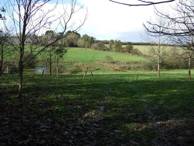 Farmland and ponds near Trenderway