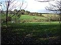 SX2153 : Farmland and ponds near Trenderway by JThomas