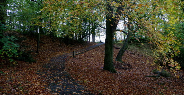 A path in the Rock Park, Llandrindod Wells