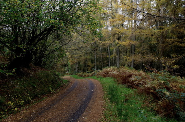 Lane to Abernefal