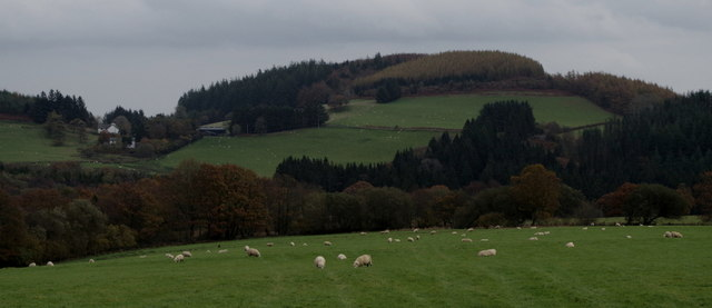 Mixed grazing and woodland