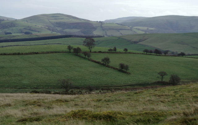 View across expanse of upland grazing