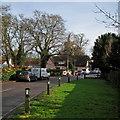 TL4551 : Great Shelford: Church Street by John Sutton