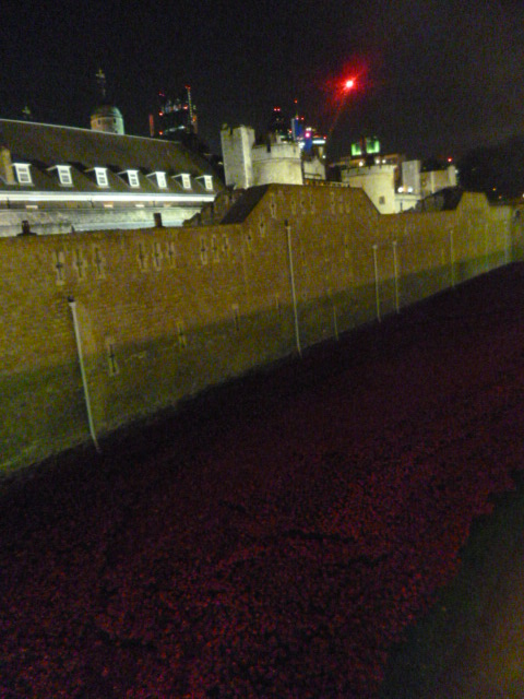 Eastern wall and poppies, Tower of London