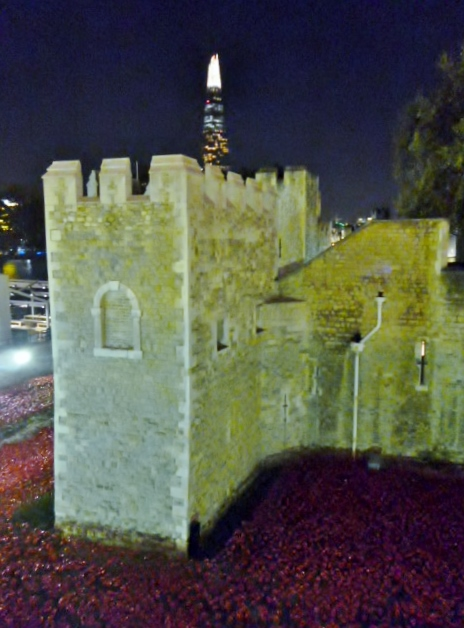 Detail and poppies, Tower of London