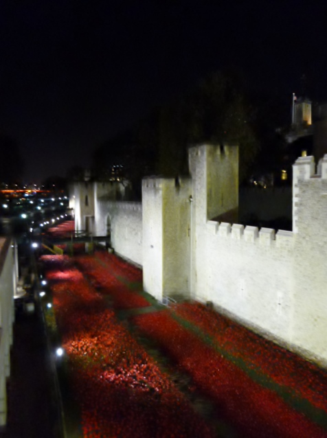 Moat of poppies, Tower of London