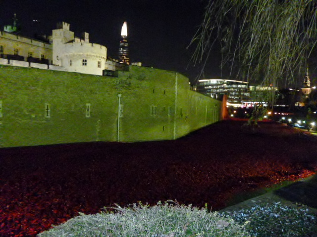 North wall and poppies, Tower of London