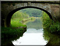 SJ9065 : Bridge and canal west of Bosley, Cheshire by Roger  Kidd