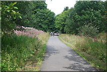 SE3058 : Nidd Valley line by N Chadwick