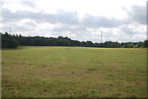 SE3058 : Large field by N Chadwick