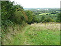 S4328 : The Kilmacoliver Loop Walk approaching the plantation by Humphrey Bolton