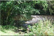 SE3258 : Small weir, River Nidd by N Chadwick