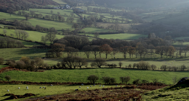 Fields towards Garth