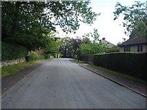 SE3357 : Lands Lane by N Chadwick