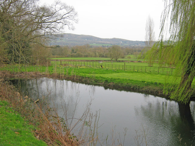 Pond at Old Colwall