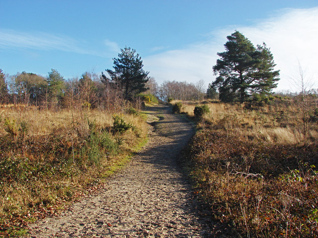 Sandy track, Yateley Common