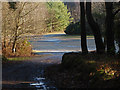 SU8458 : Hawley Hill by Alan Hunt