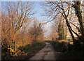 SX2569 : Footpath near Darite by Derek Harper