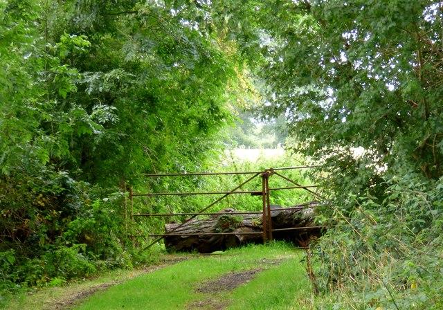 Rusty gate, Twineham