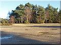 SU8458 : Bare ground, Hawley Hill by Alan Hunt