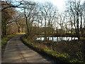 SU2472 : Laurel Pond : Week 51