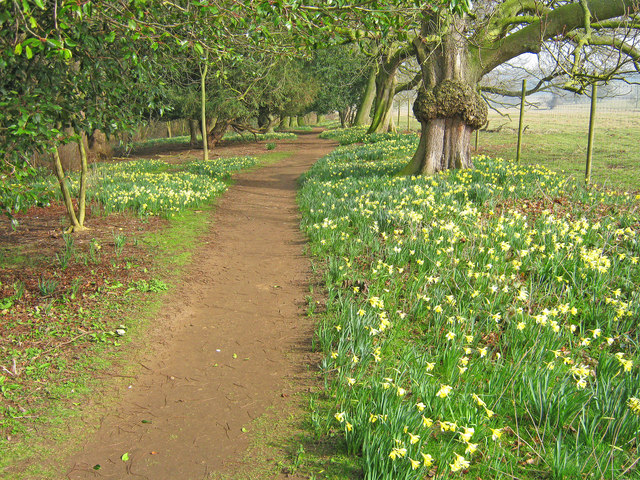 Path near Boathouse Pond
