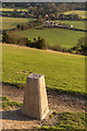TQ1751 : Box Hill trig point by Ian Capper