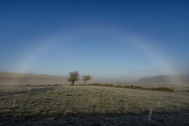 Fogbow near Barnearnie