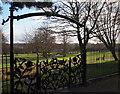 SK5461 : Rose Garden, Carr Bank Park, Mansfield, Notts. by David Hallam-Jones