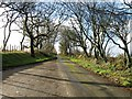 SW9060 : Country lane by Alex McGregor