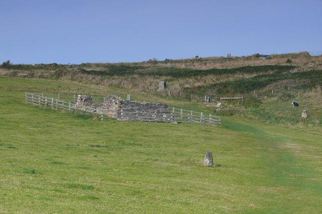 Ffynnon St Non / St Non's Well