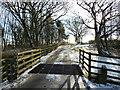 SD5112 : Track between High Moor and Harrock Hall : Week 3