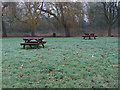 Dist:0.2km<br/>The picnic area near Thames Side car park with the edge of Laleham Park beyond.
