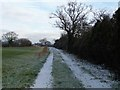 SJ4861 : Unmapped but well-used track north from Long Lane by Christine Johnstone