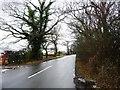SJ3573 : Capenhurst Lane [2] by Christine Johnstone