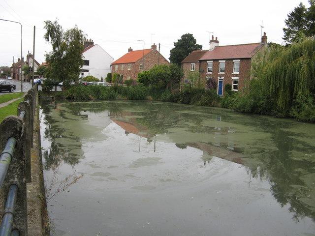 Wetwang Pond