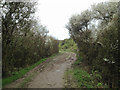 TV5198 : Muddy footpath through a blackthorn thicket, Cuckmere valley by Robin Stott