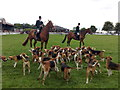 SJ9525 : Staffordshire County Show: huntsmen and hounds by Jonathan Hutchins