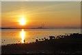 NT4477 : Sunset, Longniddry : Week 5