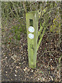 TL6004 : Bridleway sign on Fingrish Hall Lane bridleway by Adrian Cable