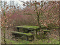 SD5401 : Unloved picnic bench, Ashton Road, Billinge by Gary Rogers