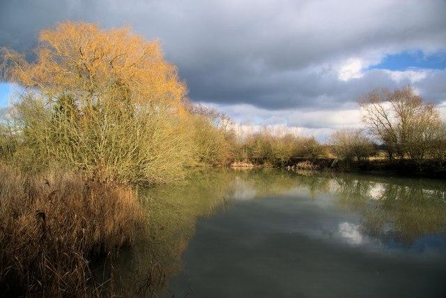 Fishpond near Sascombe Vineyards