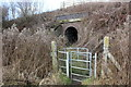 SJ4469 : Stile and tunnel to Mickle Trafford by Jeff Buck