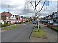 SP1288 : Sandhurst Avenue, Hodgehill by Richard Law