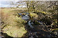 SX5380 : Youldon Brook by jeff collins