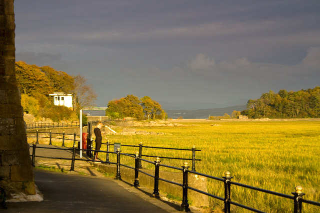Evening sun on the marshes, Grange over Sands
