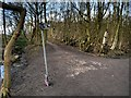 SJ8280 : Bridlepath Junction, Lindow Moss by David Dixon